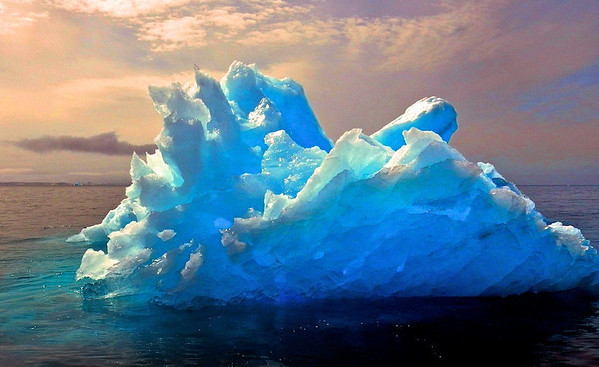 Little Iceberg